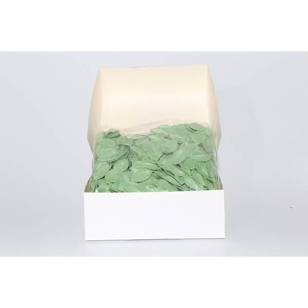 Feuilles vertes claires - x1000