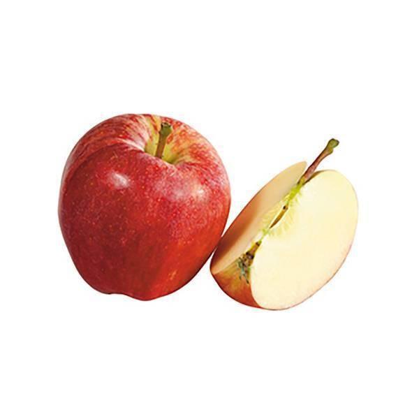 Pomme Gala à peler - 18,2kg