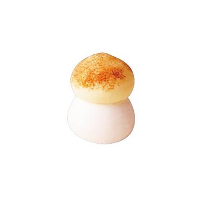 Champignon sucre brun - x192