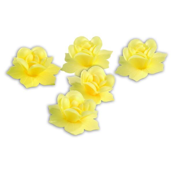 Jonquilles jaunes - x7